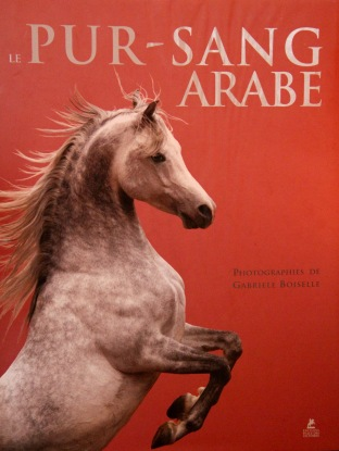 Le Pur sang arabe de Gabrielle Boiselle