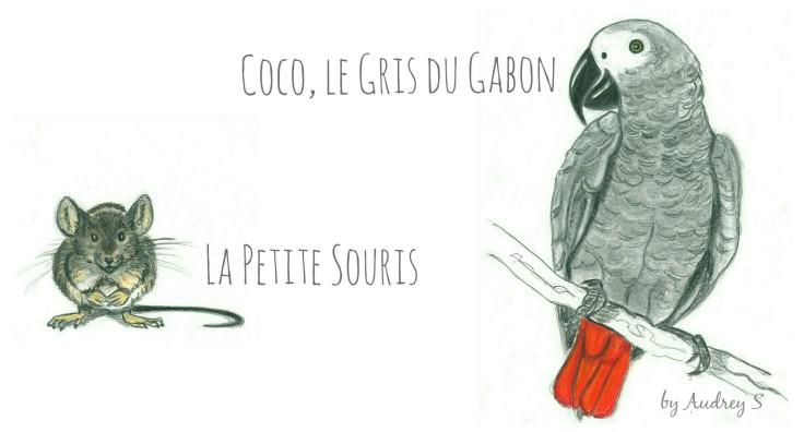 Cavalcade des blogs n° 29 - Coco et la petite Souris by Audrey S