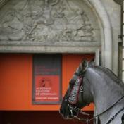 academie-equestre-de-versailles-la-voie-de-lecuyer-by-audrey-s-2