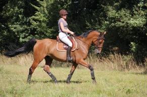 coach-qalo-et-lolotte-cavalcade-des-blogs-by-audrey-s-1
