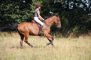 coach-qalo-et-lolotte-cavalcade-des-blogs-by-audrey-s-2