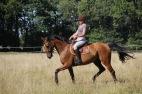 coach-qalo-et-lolotte-cavalcade-des-blogs-by-audrey-s-3