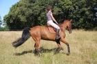 coach-qalo-et-lolotte-cavalcade-des-blogs-by-audrey-s-4