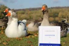 la-selection-de-lolotte-continuer-de-laurent-mauvignierphoto-by-audrey-s-7