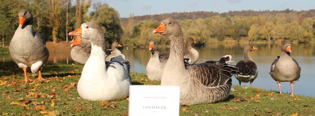 la-selection-de-lolotte-continuer-de-laurent-mauvignierphoto-by-audrey-s