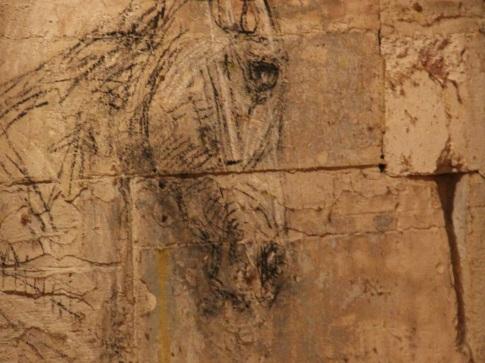 la-voie-de-lecuyer-academie-equestre-de-versailles-by-audrey-s-3