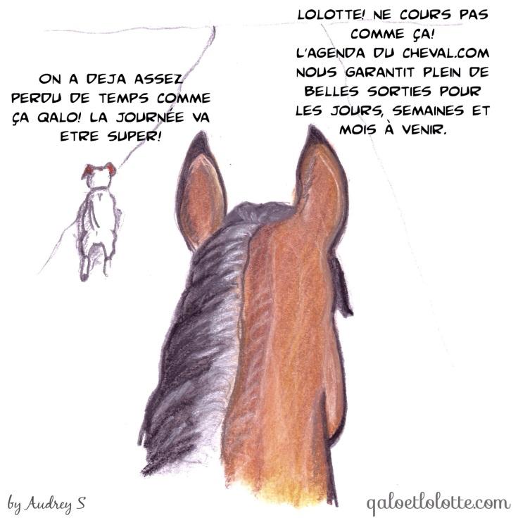 agenda-du-cheval-qalo-lolotte-10-by-audrey-s