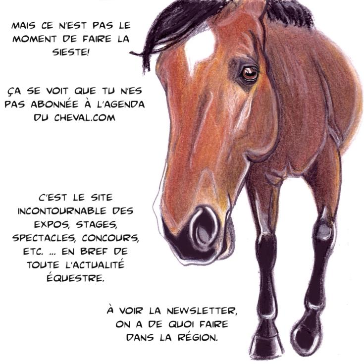 agenda-du-cheval-qalo-lolotte-4-by-audrey-s