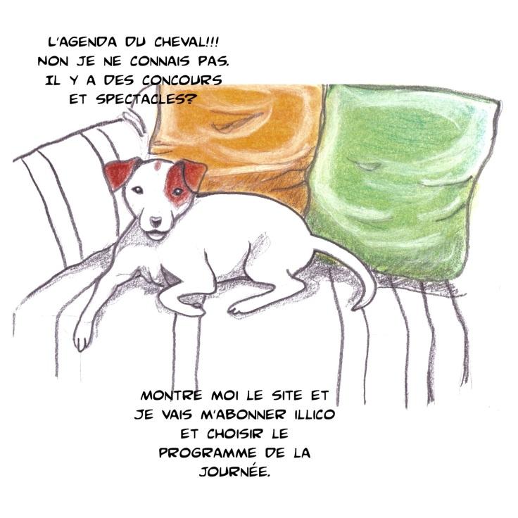 agenda-du-cheval-qalo-lolotte-5-by-audrey-s