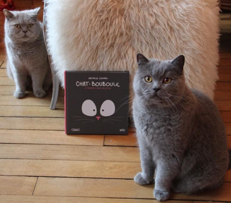 qalo-et-lolotte-le-chat-bouleboule-de-nathalie-jomard-by-audrey-s-7