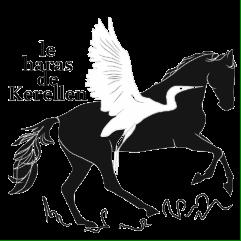 Logo Haras de Kerellen (4)