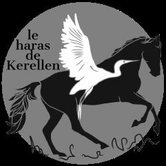 Logo le Haras de Kerellen